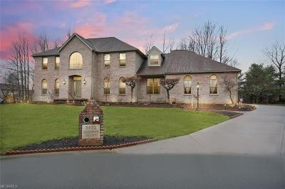 Poland Single Family Home For Sale: 8532 Reserve Ct