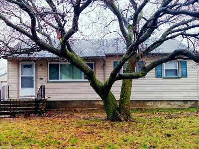 Youngstown Single Family Home For Sale: 3234 Quentin