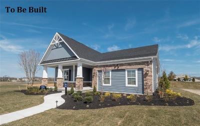 Aurora Single Family Home For Sale: 260 Lakeland Way
