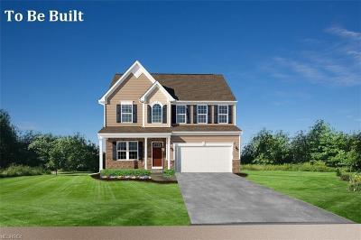 Aurora Single Family Home For Sale: 250 Lakeland Way