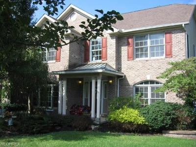 Copley Single Family Home For Sale: 416 Driftwood Ct