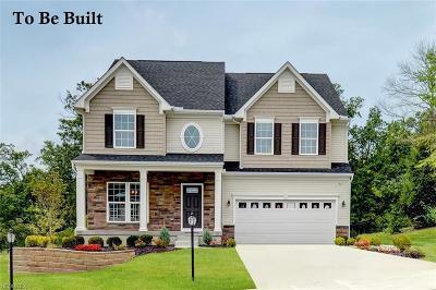 Aurora Single Family Home For Sale: 105 Lakeland Way