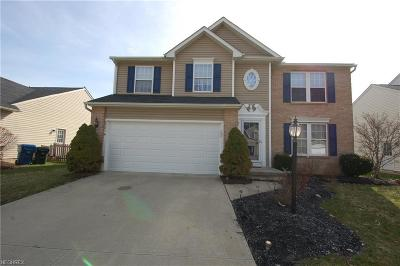 Olmsted Township Single Family Home For Sale: 8581 Wayside Dr
