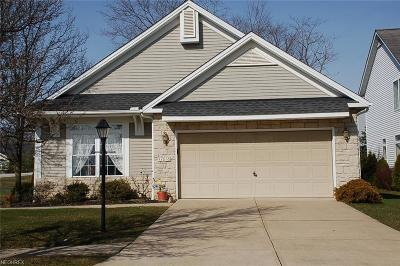 North Royalton Single Family Home For Sale: 17616 Marsh Harbor Ct
