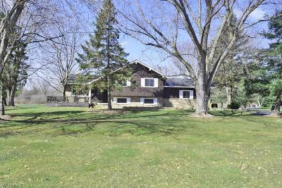Chagrin Falls Single Family Home For Sale: 18358 Snyder Rd