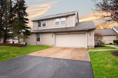 Warren Condo/Townhouse For Sale: 219 Springbrook Dr Northeast #2
