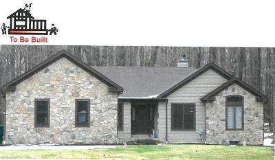 Geauga County Single Family Home For Sale: 12081 South Wintergreen Dr