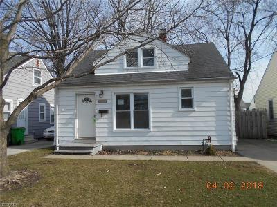 Wickliffe Single Family Home For Sale: 30064 Phillips Ave