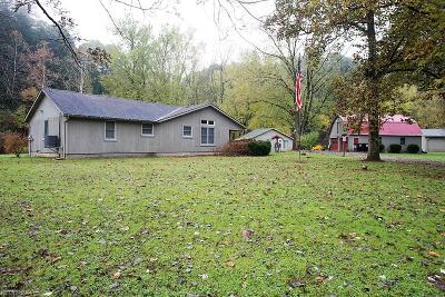 Ashland County Single Family Home For Sale: 3144-1 Wally Rd