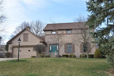 Boardman Single Family Home For Sale: 862 Terraview Dr