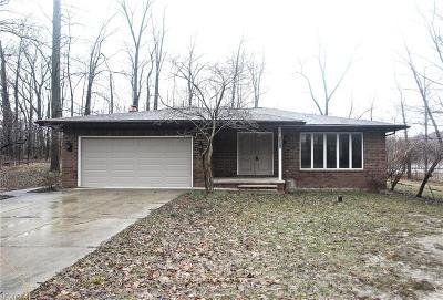 North Royalton Single Family Home For Sale: 3324 Metropolitan Park Dr