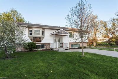 Hinckley Single Family Home For Sale: 863 West 130th St