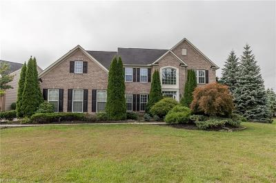 Avon Single Family Home For Sale: 33493 Vineyard Park
