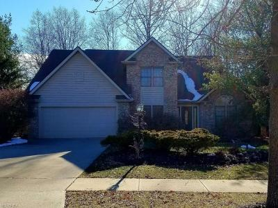 North Royalton Single Family Home For Sale: 14752 King Arthurs Ct