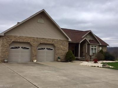 Little Hocking Single Family Home For Sale: 247 Hollywood