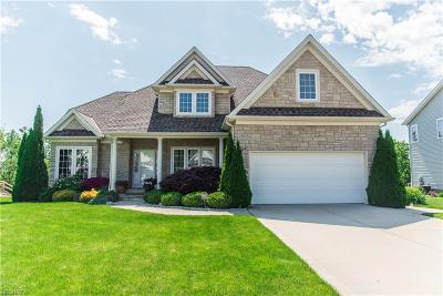 Painesville Township Single Family Home For Sale: 1648 North Shore Dr