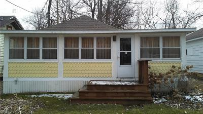 Chippewa Lake Single Family Home For Sale: 94 Euclid Dr