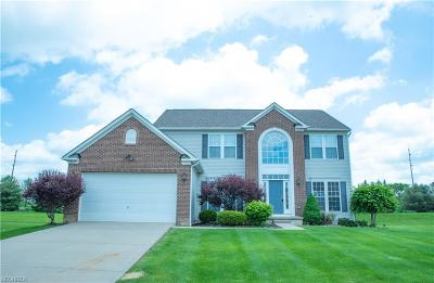 Twinsburg Single Family Home For Sale: 9449 Pam Ct