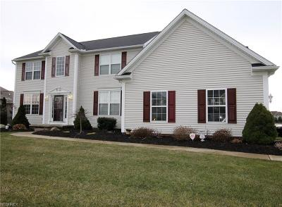 North Ridgeville Single Family Home For Sale: 37795 Terrell Dr
