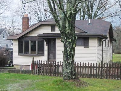 Canfield Single Family Home For Sale: 4684 South Turner Rd
