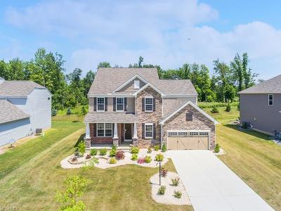 Strongsville Single Family Home For Sale: 20297 North Greystone Dr