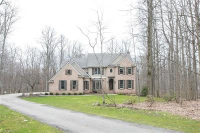 Geauga County Single Family Home For Sale: 17245 Curry Ln