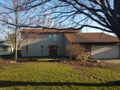 Strongsville Single Family Home For Sale: 13594 Olde Orchard Rd