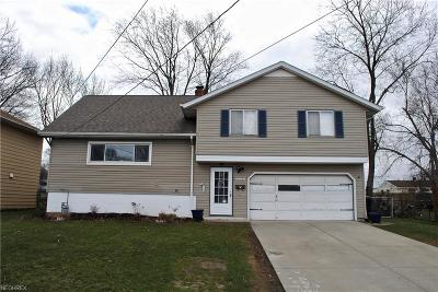 Brook Park Single Family Home For Sale: 14151 Starlite Dr