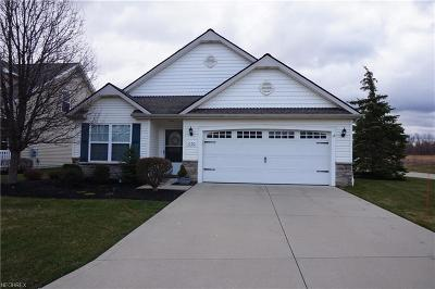 Painesville OH Condo/Townhouse For Sale: $149,900
