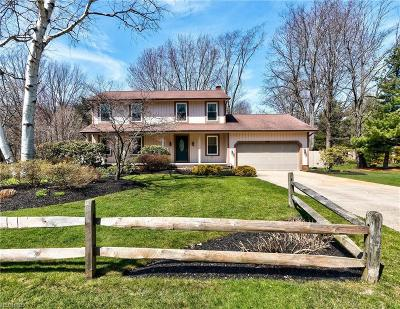 Lake County Single Family Home For Sale: 4367 Mill Pond Cir