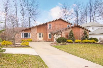 Olmsted Township Single Family Home For Sale: 7200 Timber Ln