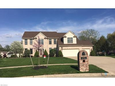 Strongsville Single Family Home For Sale: 12179 Spruce Pt