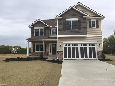 Lorain County Single Family Home For Sale: 1124 Limerick Ln