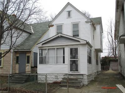 Cleveland Multi Family Home For Sale: 1077 East 78th St