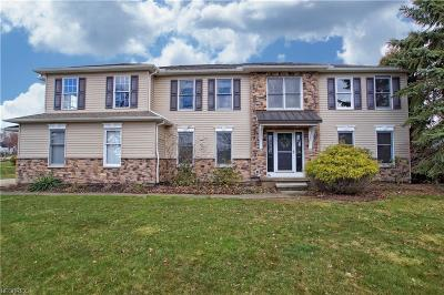 Concord Single Family Home For Sale: 8030 Carriage Hills Dr
