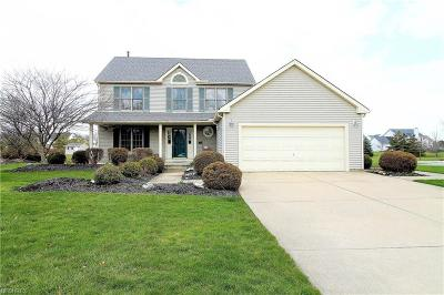 Olmsted Township Single Family Home For Sale: 27072 Laurel Ln