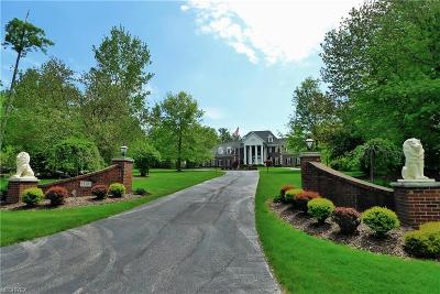 Chagrin Falls Single Family Home For Sale: 13395 Ledgebrook Ln