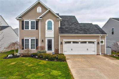 Painesville Single Family Home For Sale: 591 North Settlers Ln