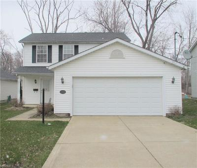 Painesville OH Single Family Home For Sale: $115,000