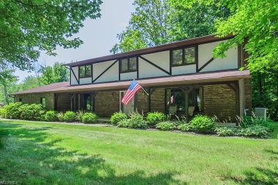 Geauga County Single Family Home For Sale: 8342 Martingale Ln