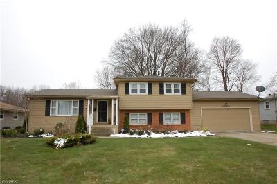 Boardman Single Family Home For Sale: 1613 Rosehedge Dr