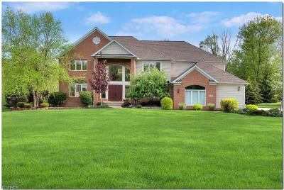 Solon Single Family Home For Sale: 6975 Woodlands Ln