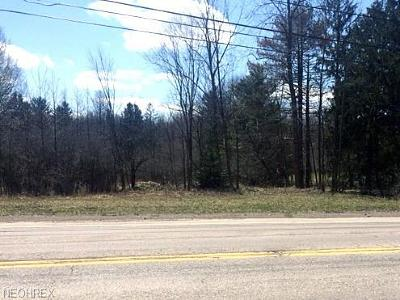 North Royalton Residential Lots & Land For Sale: 4211 Royalton Rd