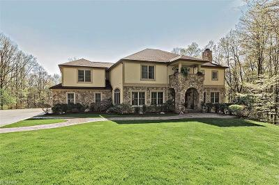 Chagrin Falls Single Family Home For Sale: 9605 Nighthawk Dr