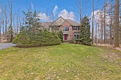 Geauga County Single Family Home For Sale: 17341 Old Tannery Trl