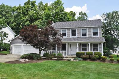 Twinsburg Single Family Home For Sale: 2243 White Marsh Dr