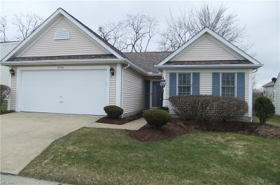Brunswick OH Single Family Home For Sale: $164,900