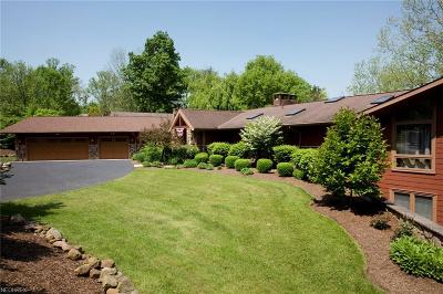 Chagrin Falls Single Family Home For Sale: 500 Solon Rd