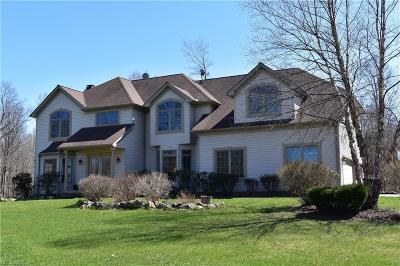 Geauga County Single Family Home For Sale: 10735 Dawson Dr