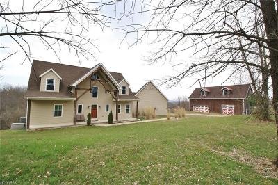 Muskingum County Single Family Home For Sale: 4408 Hunt Rd #RD